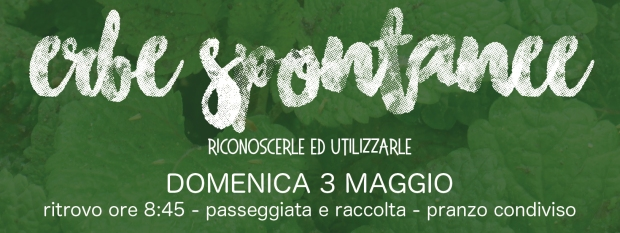 Banner_Tutti WEB5